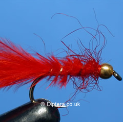 Goldhead Bloodworm