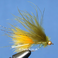 Dawsons Olive with Sunburst Tail