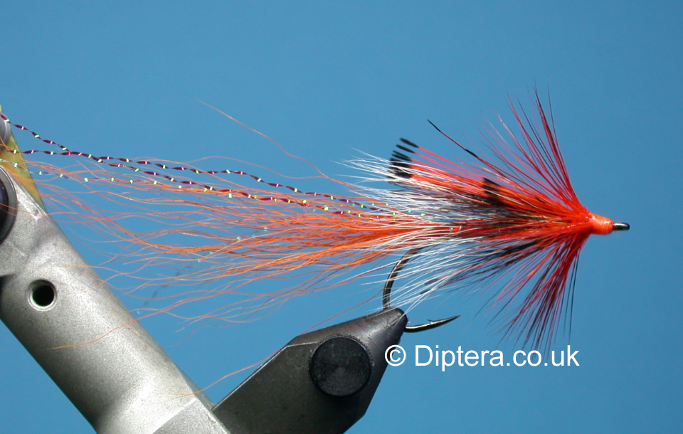 Tying the Ally's Shrimp Completed Fly