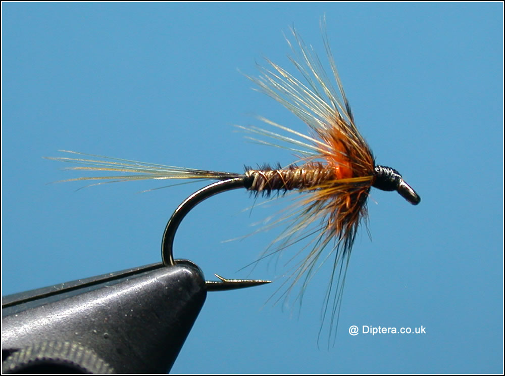 The Fluo Orange Cruncher Fly Image